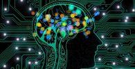 cerebro que representa las habilidades blandas y habilidades duras,