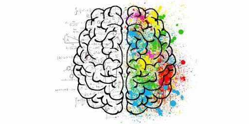 ilustración del cerebro de un growth hacker con el hemisferio izquierdo haciendo referencia a los números y las estructuras y el hemisferio derecho haciendo referencia a la creatividad y al cuidado de la vida, funciones, perfil, qué hace un growth hacker, qué es growth hacking, qué es el growth hacking, qué es un growth hacker lean marketing,